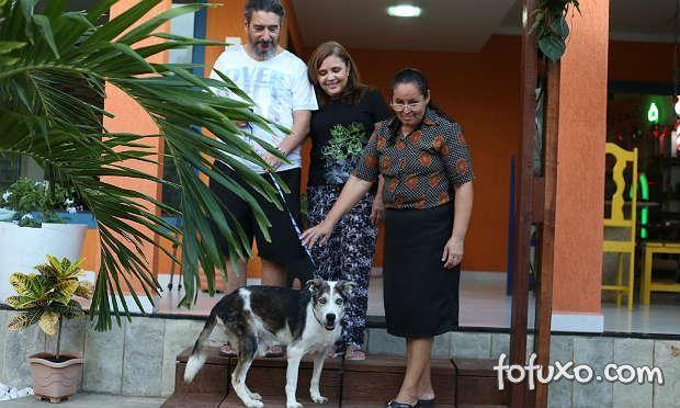 Vídeo mostra história de cardiopata que adota cão com problemas no coração
