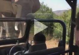 Elefante persegue carro de Arnold Schwarzenegger