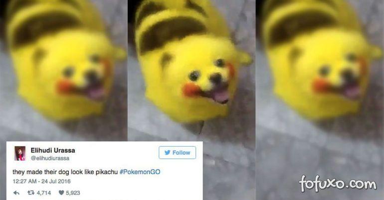 Vídeo mostra cachorro pintado de Pikachu