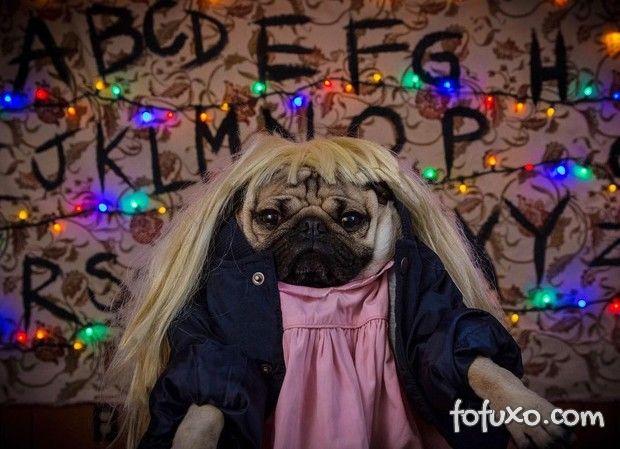 Pug estrela paródia de Stranger Things
