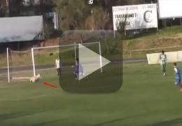 Cachorro entra em campo e evita gol
