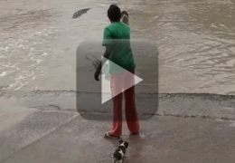 Mulher espanta crocodilo com chinelo