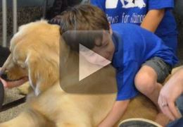 Menino autista que não gosta de ser tocado faz amizade com cão