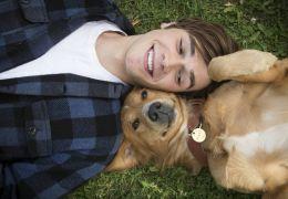 Quatro Vidas de um Cachorro: Produtor admite falha com cão durante as gravações
