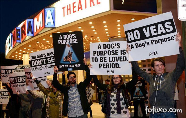 Boicote contra filme 'Quatro Vidas de um Cachorro' não dá certo nos EUA