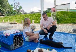 Deputado apresenta projeto para que animais entrem em repartições públicas