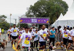 São Paulo terá corrida com cachorros