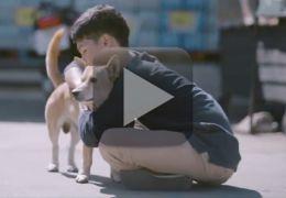 Vídeo mostra garoto abraçando cães de rua