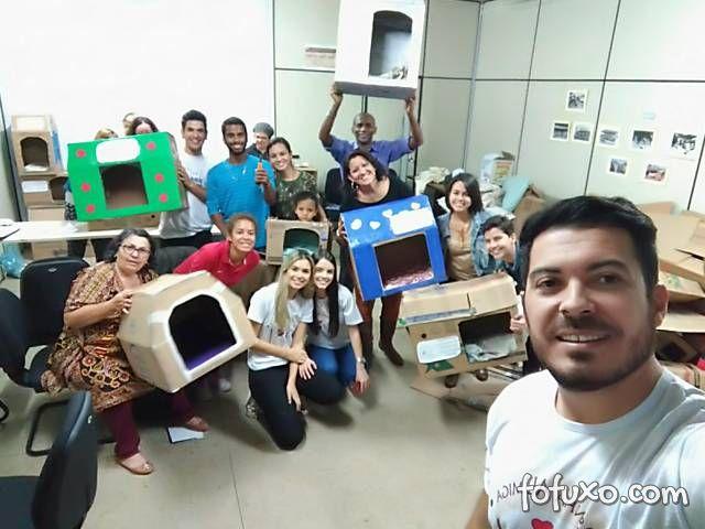Grupo de voluntários faz casinhas de papelão para cachorros de rua