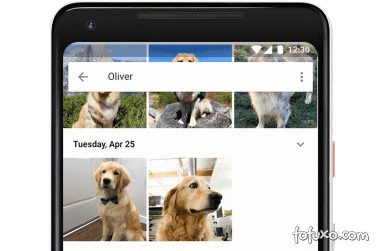 Google anuncia reconhecimento de cães e gatos no app Fotos
