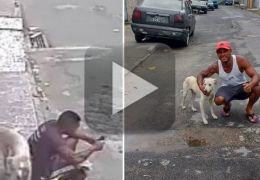 Cachorro faz xixi nas costas de homem sentado na calçada