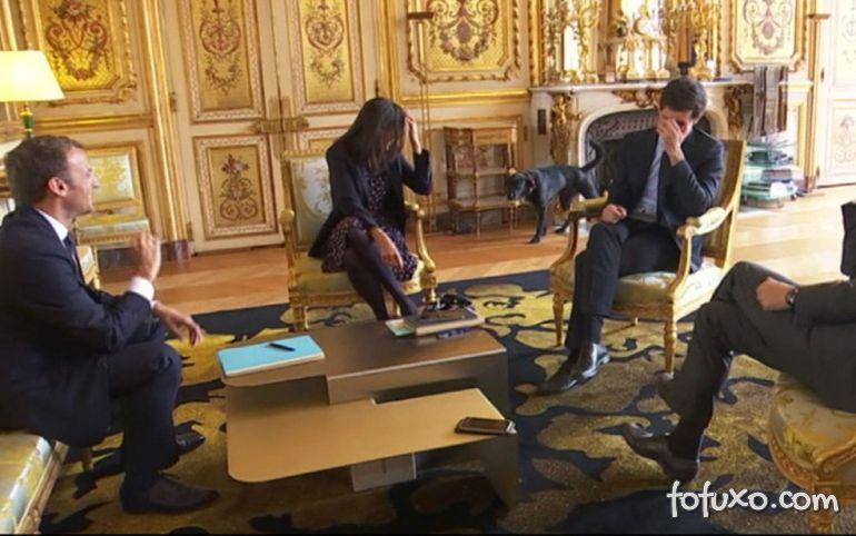 Cachorro de Macron faz xixi durante reunião oficial