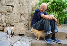 Gatos e idosos: dicas para ajudar nesta relação
