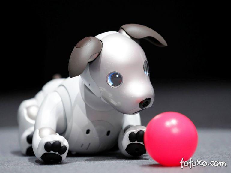 Conheça o novo cachorrinho-robô da Sony