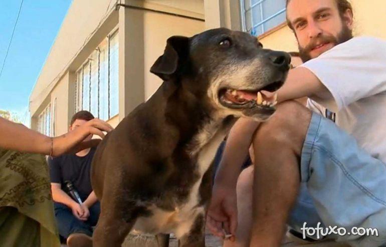 Cachorro ganha homenagem de formandos em curso de biologia