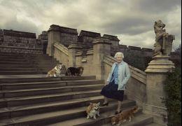 Morre último cachorro Corgi da Rainha Elizabeth II