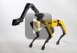 """Boston Dynamics anuncia para 2019 início das vendas de """"robô-cachorro"""""""
