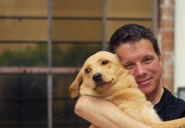 Por que alguns cães não gostam de abraços?