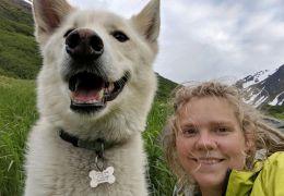 Cachorro ajuda a resgatar mulher que caiu em rio no Alasca