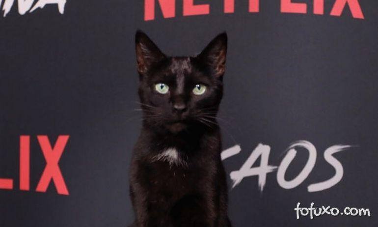 Salem foi a grande estrela de evento de lançamento de nova série de Sabrina
