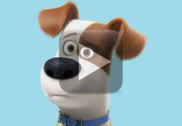 Confira o trailer de Pets – A Vida Secreta dos Bichos 2