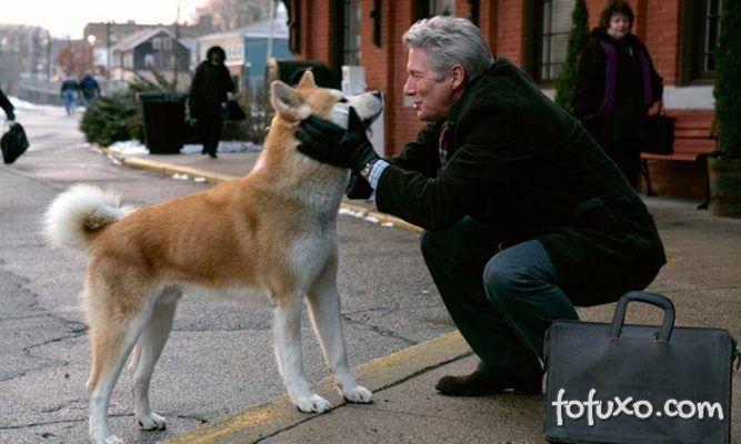 Curiosidades: 4 cães leais registrados ao longo da história.