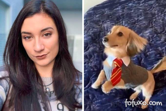 Cachorro aparece treinando com feitiços do Harry Potter