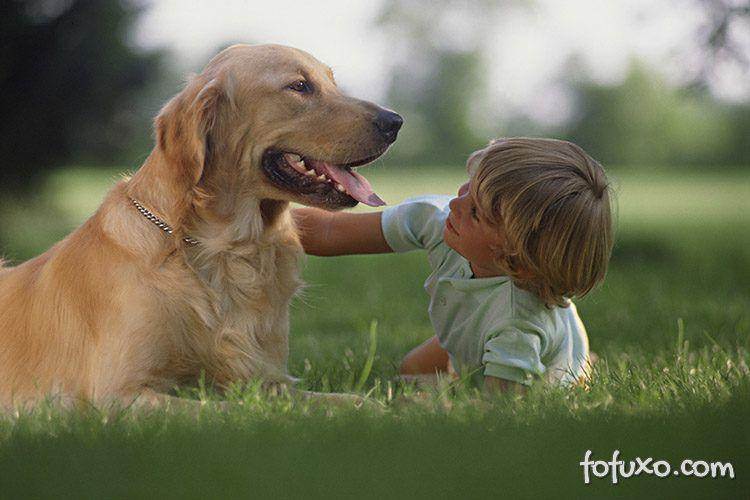 Cães ajudam no desenvolvimento de crianças autistas em Araçatuba