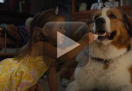 """Sequência de """"Quatro Vidas de um Cachorro"""" ganha trailer"""