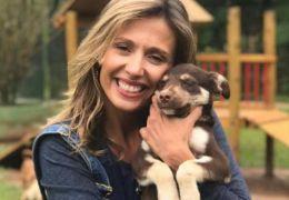 Luisa Mell aluga três espaços para receber 1707 cachorros resgatados