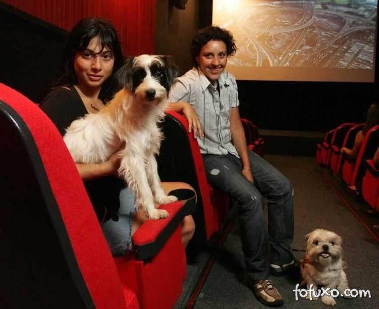 Cinemas começam a deixar pessoas levar seus cachorros
