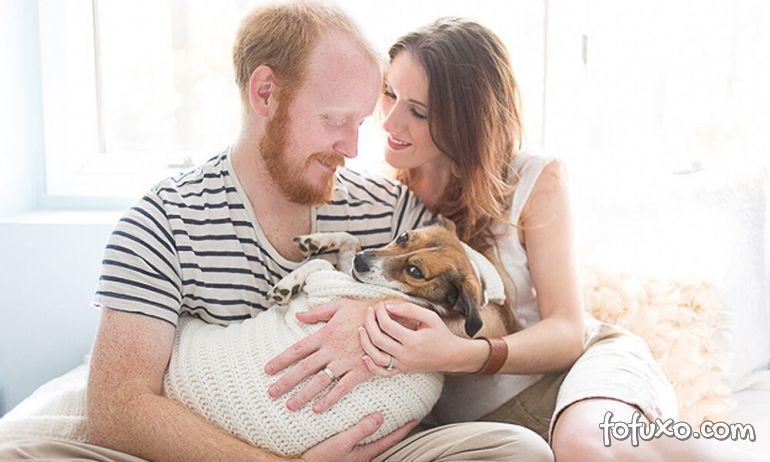 Pesquisa afirma que 66% dos entrevistados consideram cachorros como seus filhos