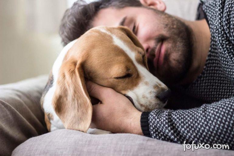 Pesquisa: Genética pode explicar decisão de ter ou não um cachorro