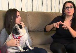 Cachorra é treinada para entender Libras em família com irmãos surdos