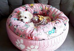 Saiba como fazer uma cama para cachorro com pneu velho