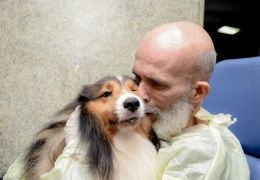 Paciente com câncer apresenta melhora após encontrar cão em hospital