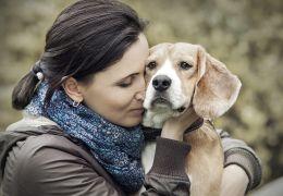 Pesquisa afirma que cachorro em casa reduz em 24% o risco de morte de pessoas