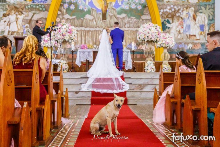 Fotógrafo registra cachorro de rua que invadiu casamento