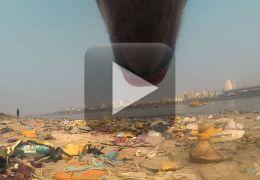 ONG cria vídeo mostrando como vivem os cachorros abandonados