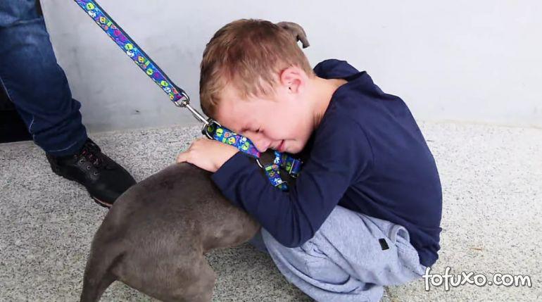 Menino reencontra cachorro furtado em parque e se emociona