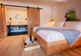 Hotel dos EUA projeta quartos para animais de estimação