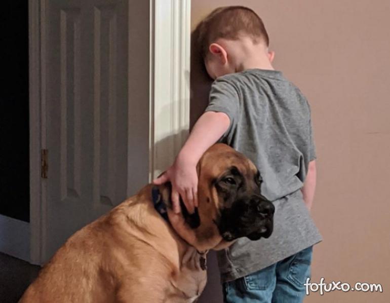 Cachorro fica junto com menino durante castigo
