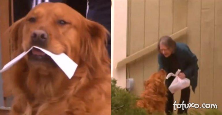 Cachorro aprende a fazer entregas para idosa