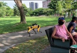 Cachorro robô ajuda no combate ao coronavírus