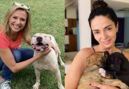 Luisa Mell critica Claudia Ohana por devolver cachorros adotados