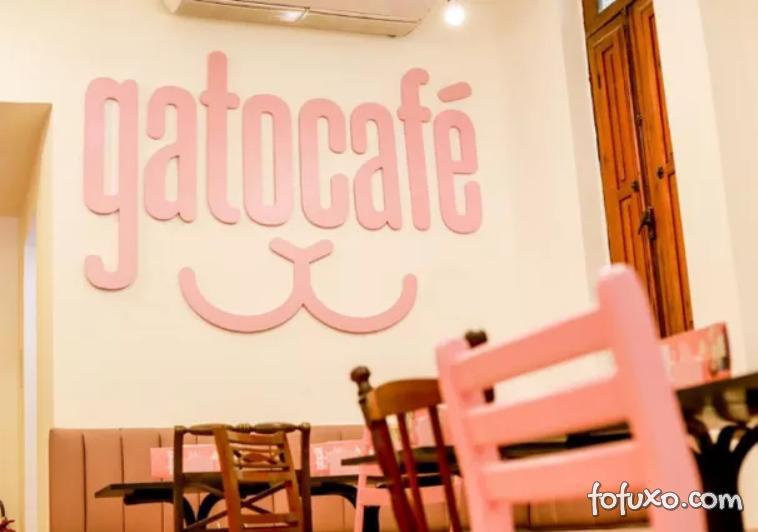 Rio de Janeiro ganha café com temático de Gato