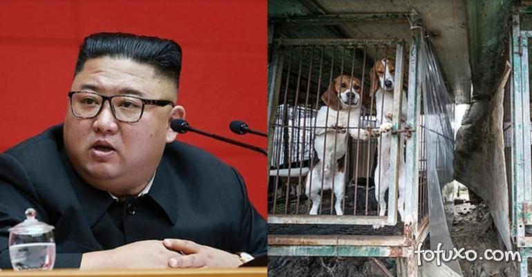 Coréia do Norte pode ter proibido pessoas de terem cães como mascotes