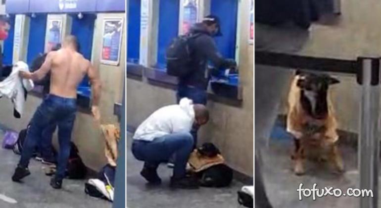 Homem tira própria camiseta e dá para cachorro que estava com frio