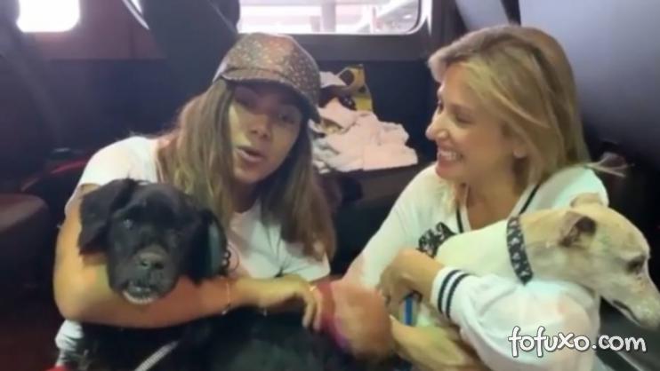 Anitta adota 2 cachorros com problemas físicos