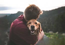 """Batimentos cardíacos de cães aumentam quando eles escutam """"eu te amo"""" dos donos"""